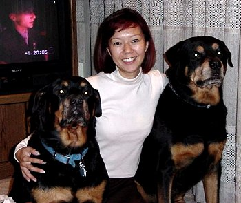 Miriam and the dogs